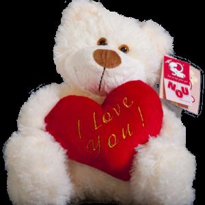 Ursul Max cu inima