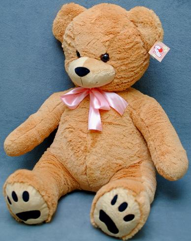 Ursul Danila-2